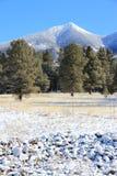 Mount Humphreys, Arizona Stock Images