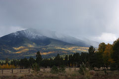 Mount Humphries cloaked in autumn spleandor Royalty Free Stock Photos
