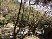 Mount Ida Royalty Free Stock Photography