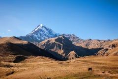 Mount Kazbek in the Caucasian mountains Royalty Free Stock Photo