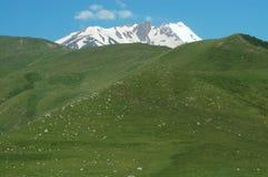 Mount Kazbek, Georgia Royalty Free Stock Image