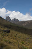 Mount Kenya 1. Mount Kenya from the distance. Peak in the background. This is the route through Mackinder's Valley stock photo