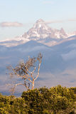 Mount Kenya Stockbilder