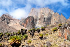 Mount Kenya, Afrika Lizenzfreie Stockfotos