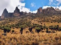 Mount Kenya Sirmon rutt Fotografering för Bildbyråer