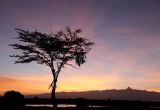 Mount kenya during sunrise, Ol Pejeta Conservancy, kenya Royalty Free Stock Photo