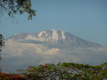 Mount Kilimanjaro стоковое фото rf