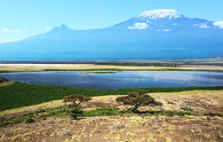Mount Kilimanjaro Royalty Free Stock Photography