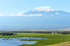 Mount Kilimanjaro Stock Images
