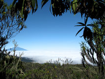 Mount kilimanjaro Royalty Free Stock Photography
