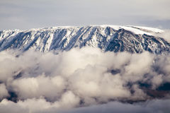 Mount Kilimanjaro. Highest mountain in Africa Stock Images
