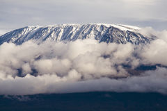 Mount Kilimanjaro. Highest mountain in Africa Stock Photography