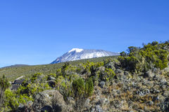Mount Kilimanjaro, the highest mountain in Africa Royalty Free Stock Image
