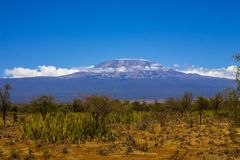 Mount Kilimanjaro,the highest mountain in Africa. Mount Kilimanjaro,the highest mountain in Africa taken from the Kenya side stock photography