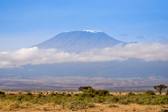Mount Kilimanjaro I setzen voraus lizenzfreie stockfotografie