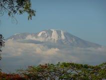 Mount Kilimanjaro. A snow-topped Mount Kilimanjaro Royalty Free Stock Photo