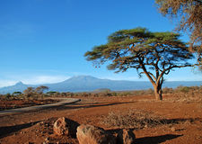 Mount Kilimanjaro, Tanzania Royalty Free Stock Photography