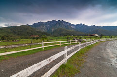 Mount Kinabalu from dairy farms from left. This view taken from dairy farm near kundasang area royalty free stock photos