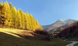 Mount Klak, Mala Fatra from Strazovske vrchy, Slovakia Royalty Free Stock Photography