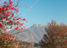 Mount Klak, Mala Fatra, Strazovske vrchy, Slovakia Stock Photos