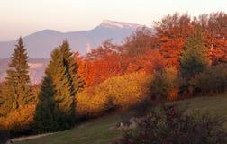 Mount Klak, Mala Fatra, Strazovske vrchy, Slovakia Royalty Free Stock Image