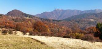 Mount Klak, Mala Fatra, Strazovske vrchy, Slovakia Stock Image