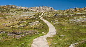 Mount Kosciuszko National Park in Australia. Mount Kosciuszko National Park in Australia (near Thredbo village Stock Images