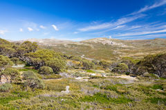 Mount Kosciuszko View. The majestic view towards Mount Kosciuszko from Charlotte Pass lookout on a clear autumn day in New South Wales, Australia Stock Photography