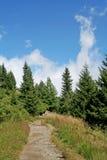 mount krajobrazowa Zdjęcia Stock