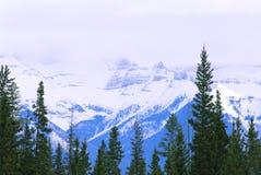 mount krajobrazowa Fotografia Stock