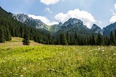 mount krajobrazowa s Obraz Royalty Free