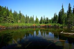 mount lake Obrazy Royalty Free