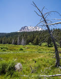 Mount Lassen Royalty Free Stock Photos