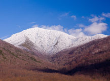 Mount leconte in snow in smokies Stock Photo