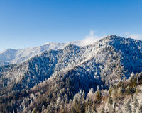 Mount leconte in snow in smokies Stock Photography
