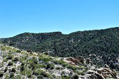 Mount Lemmon, Tucson, Arizona, United States. Scenic landscape view with vegetation of Mount Lemmon located in Tucson, Arizona in the United States royalty free stock photos