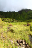 Mount Liamuiga - Saint Kitts. View of Mount Liamuiga from the bottom of The Crater of St Kitts Stock Photos