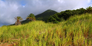 Mount Liamuiga in Saint Kitts Stock Image