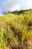 Mount Liamuiga in Saint Kitts Stock Photography