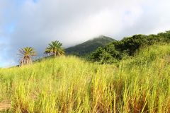 Mount Liamuiga in Saint Kitts Royalty Free Stock Photo