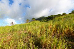 Mount Liamuiga in Saint Kitts Royalty Free Stock Photography