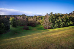 Mount Lofty Botanic Gardens hills and trees in the afternoon sun Royalty Free Stock Image