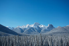 Mount Lougheed Royalty Free Stock Image