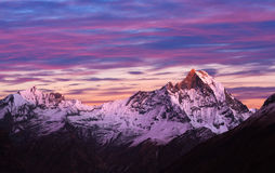 Mount Machapuchare, Nepal, Himalayas royalty free stock image