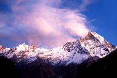 Mount Machapuchare (Fishtail) at sunset, view from Annapurna bas Stock Photography