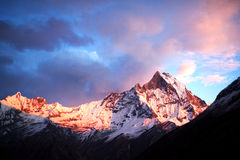 Mount Machapuchare (Fishtail) at sunset, view from Annapurna bas Royalty Free Stock Image