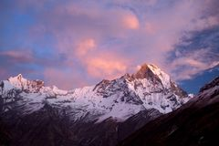 Mount Machapuchare sunset Stock Image