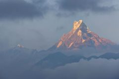 Mount Machhapuchchhre in evening soft sun light