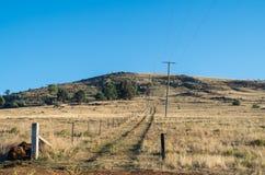 Mount Major at Dookie near Shepparton, Australia. Mount Major and its television transmission towers at Dookie near Shepparton, Australia Royalty Free Stock Photos