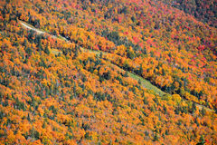 Mount Mansfield. With canopy of autumn trees Stock Photography